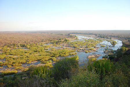 Afrique du Sud (321)
