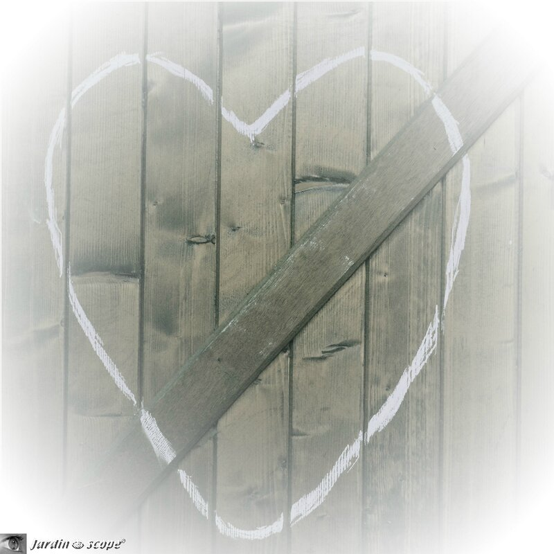 Dessine-moi-un-Coeur