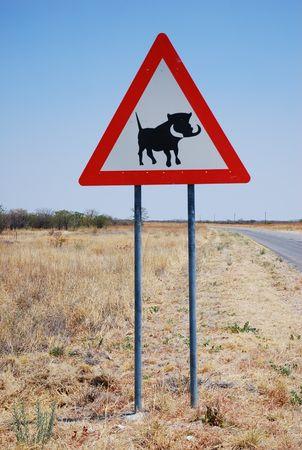 Namibie__84_