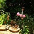 Jardin Poterie Hillen 1206164