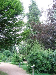 IMG_14946 La Pépinière Jardin des 5 Sens