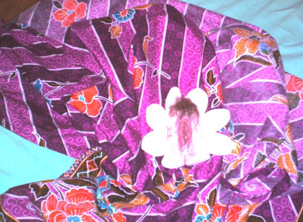 fleur_parmi_les_fleurs
