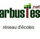arbustes1