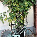 Vélo_2545