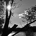 ... La Loire qui s'écoule