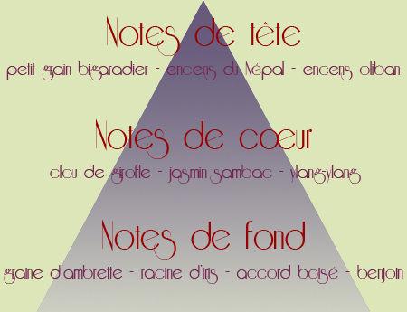 Yasamin_pyramide_odeurs