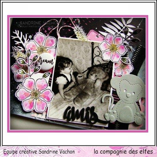 Sandrine VACHON page AMIS dt LCDE déc (2)
