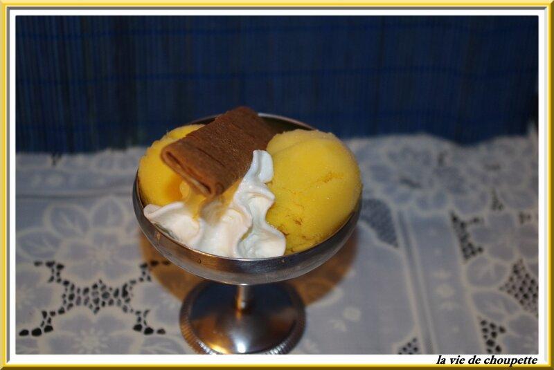 glace maison à la mangue-23