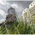 Parc de Billancourt 46