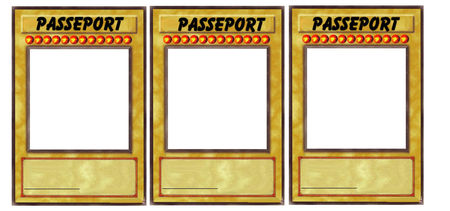 passeports_plus__a_decorer
