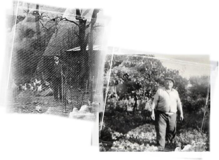 grand pere dans son jardin Foont rozet