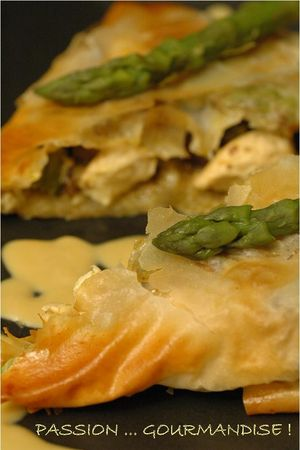 Filo_poulet_marron_asperge_morille_3