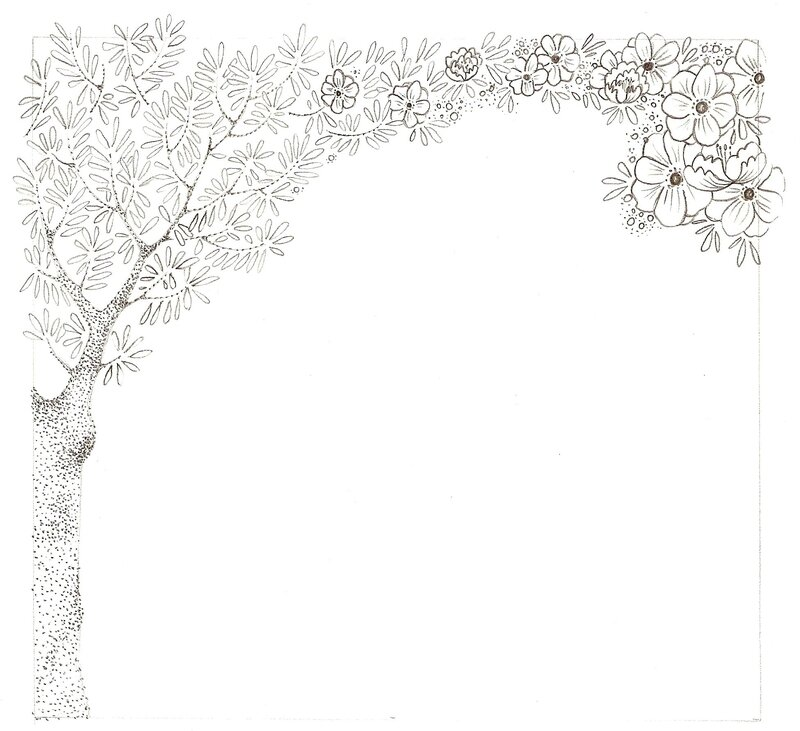 croquis olivier