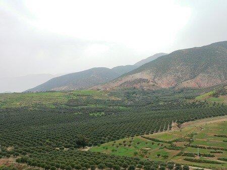 maroc__93_