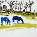 Equidés bleus