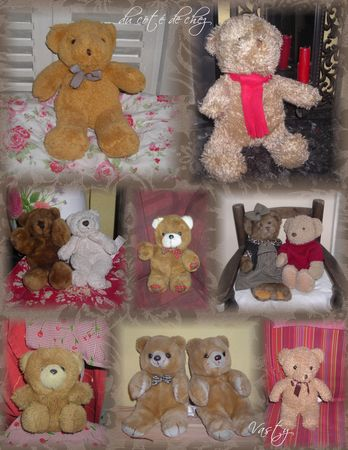 collectionnounours