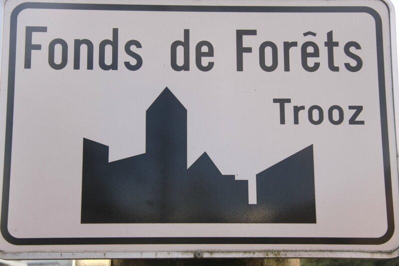 01 - Forêt ; avec ou sans s