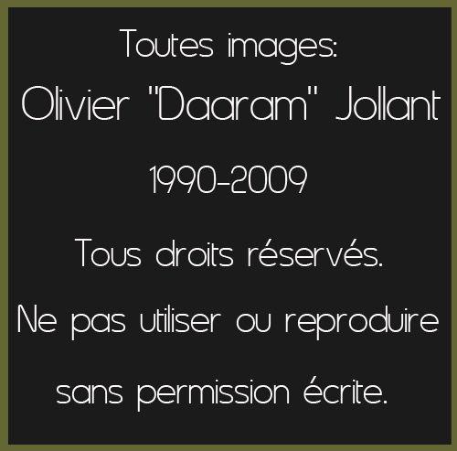 Copyright_Olivier Daaram