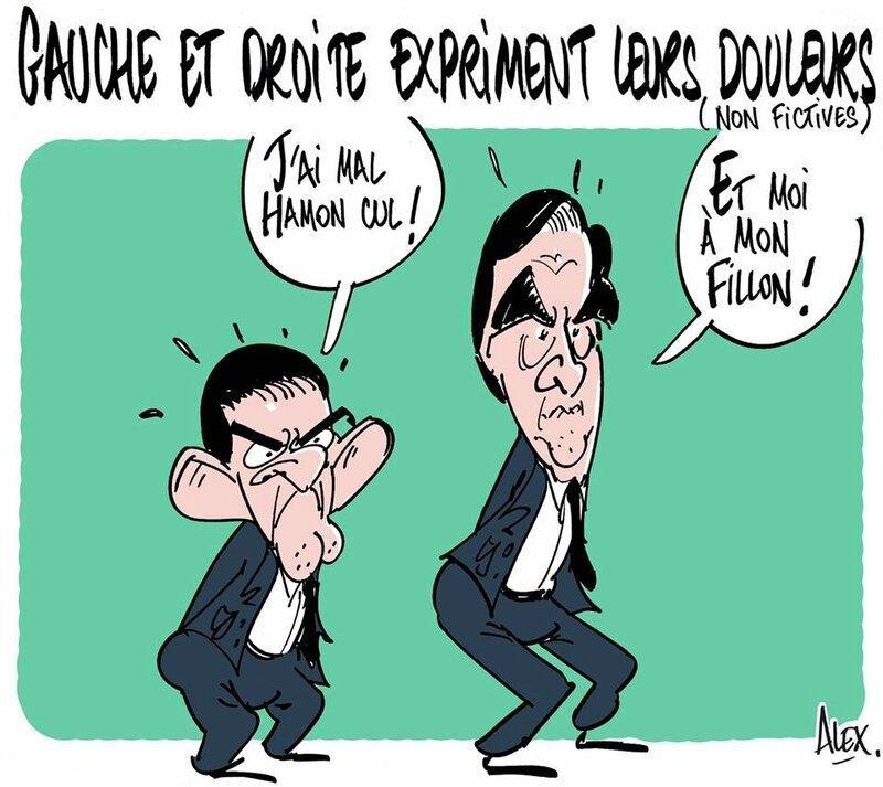 cul-fion-valls-hamon-fillon-dessin-alex