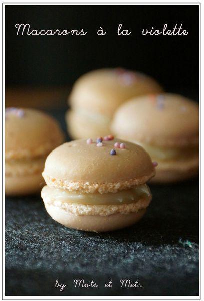 macarons violette 1