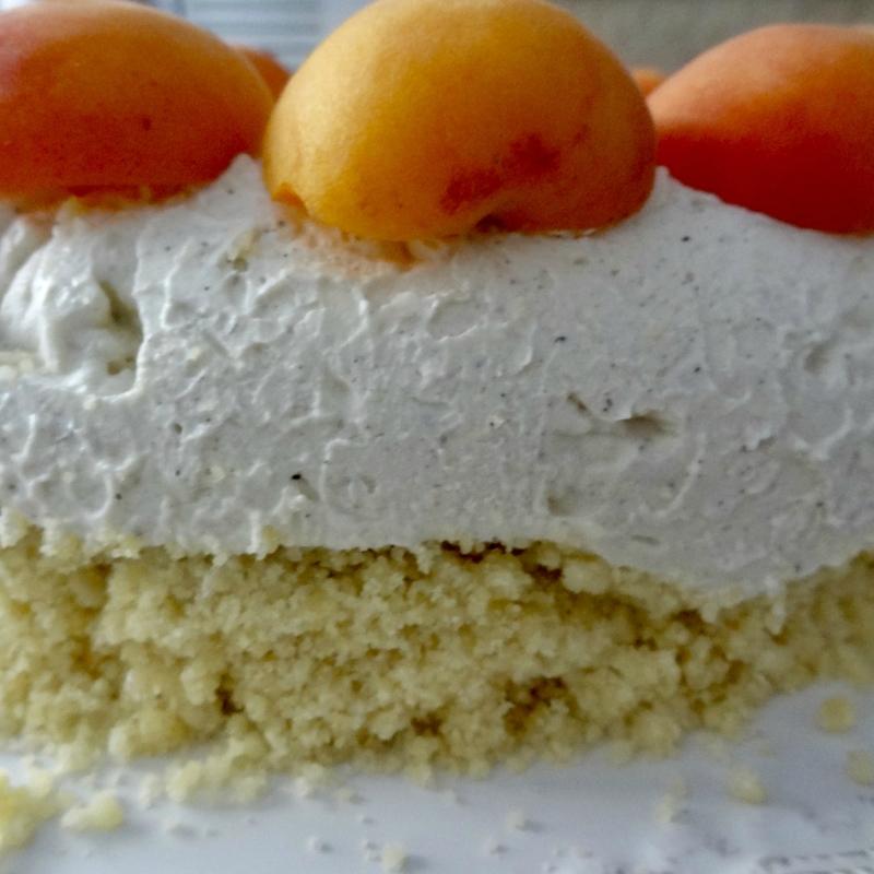 cheesecake glacé à l'abricot 2