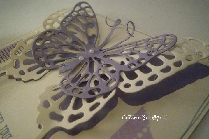 Carte papillon 2