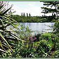 Lac Mimizan 05051537