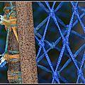 De rouille et de cordes