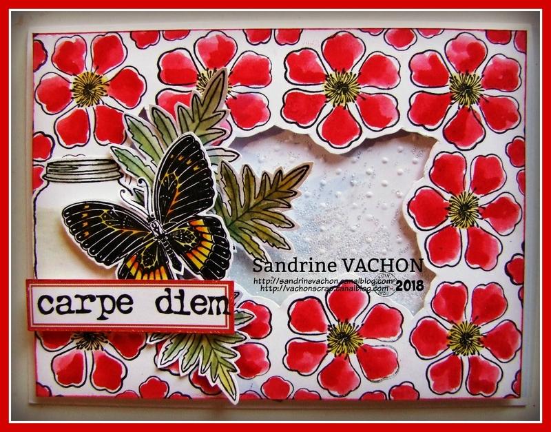 Sandrine VACHON défi 527 mars (1)