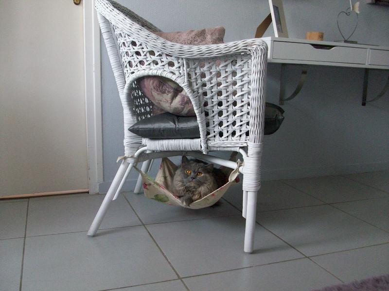 fauteuil rotin (4)