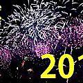 Bonne année bonne santé tous mes vœux de bonheur bisous