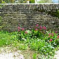 - UN MUR TRES ARTISTIQUE -Jardin de Courbet -