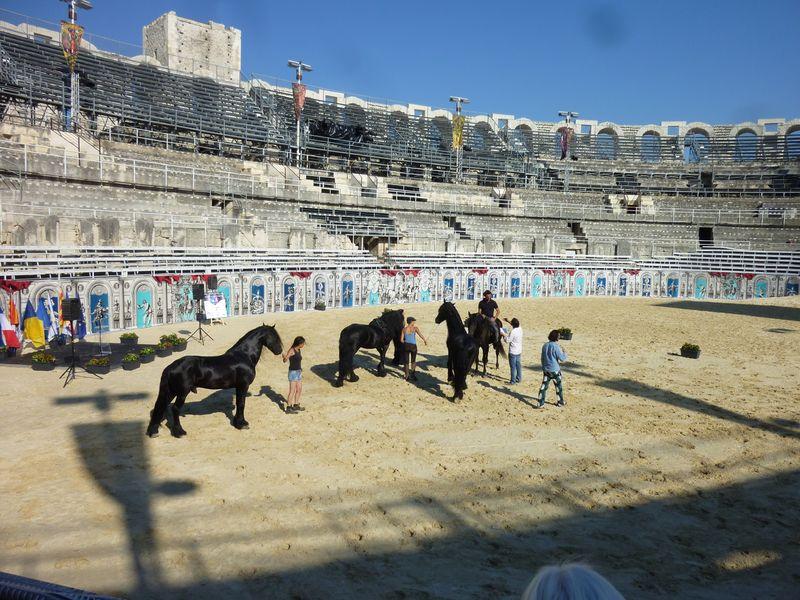 Arènes, chevaux et écuyers 23-07-2013 001