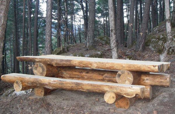 table en rondins de bois brut - Table De Jardin En Rondin De Bois