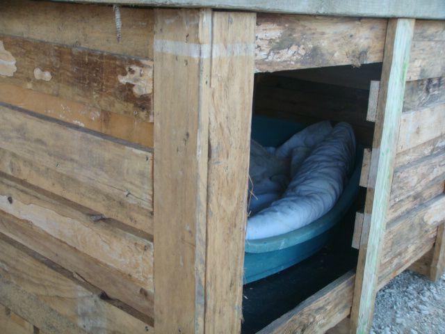 Une niche avec une caisse de palette passe temps de nini - Niche pour chien en palette ...
