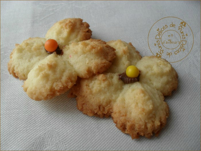biscuits presse coco 2