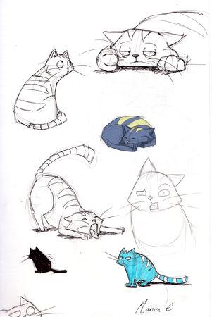 cat_posing2