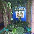 Villa Majorelle, bassins et fontaines 6