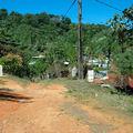 Au bout de la rue, au loin, le mont Haut-Matoury
