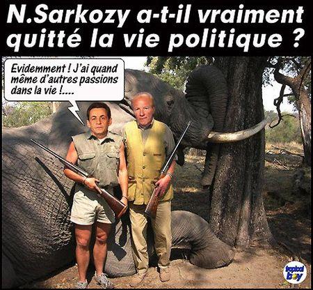 SARKO_SAFARI