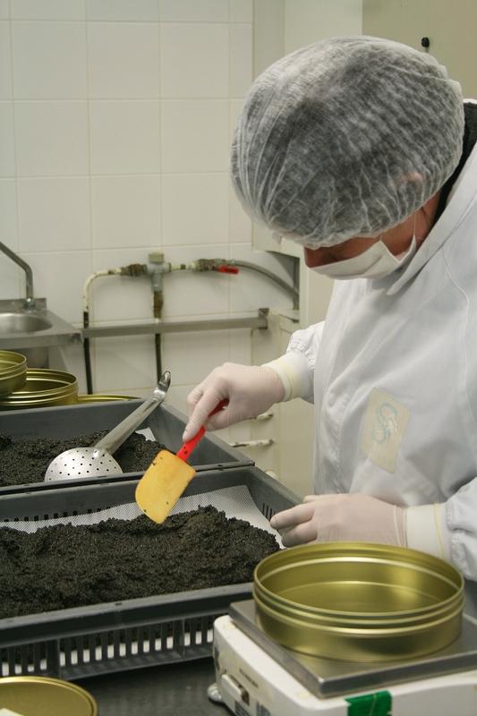 Caviar sturia 1 - Minouchka 4