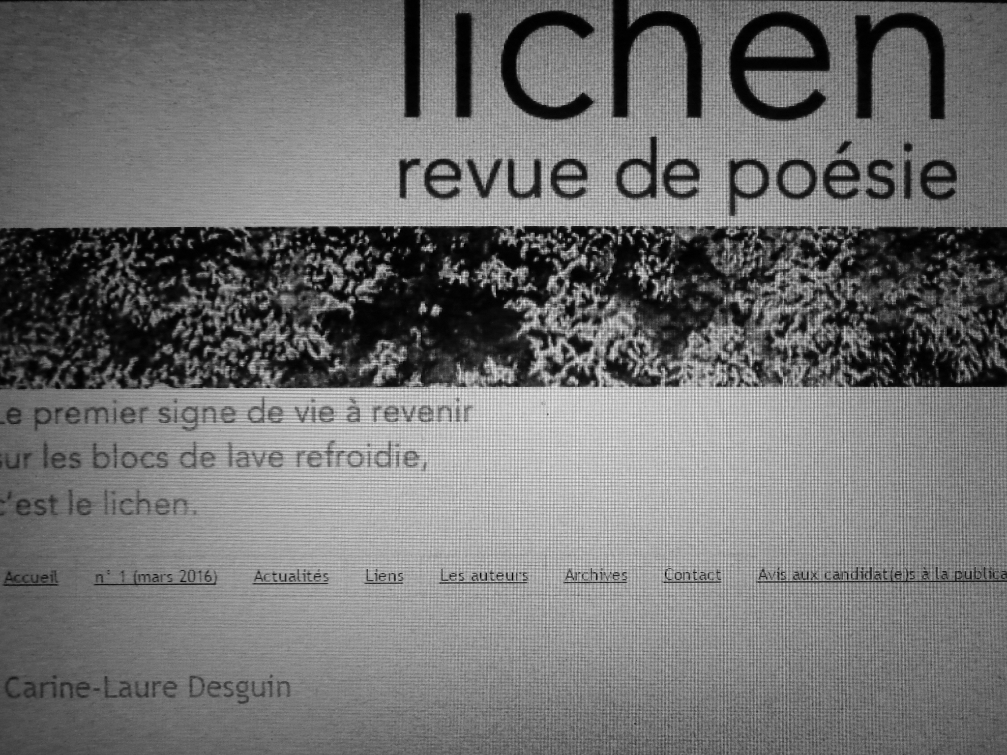 Dans Lichen 13 (avril 2017), deux textes de C.-L. Desguin