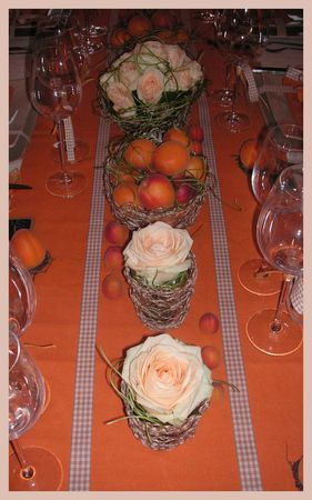 2009_07_07_table_abricots22