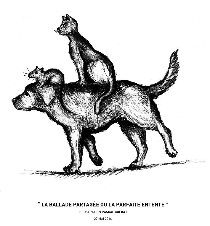 """"""" La ballade partagée ou la parfaite entente """""""