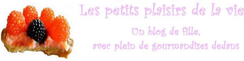 ptit_plaisir_de_la_vie