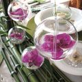 table bulles 050