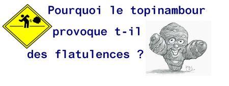topinambourg_1