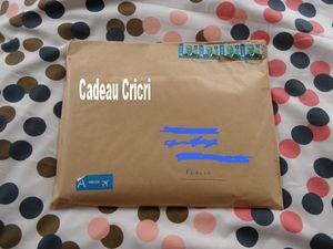 Cricricad1