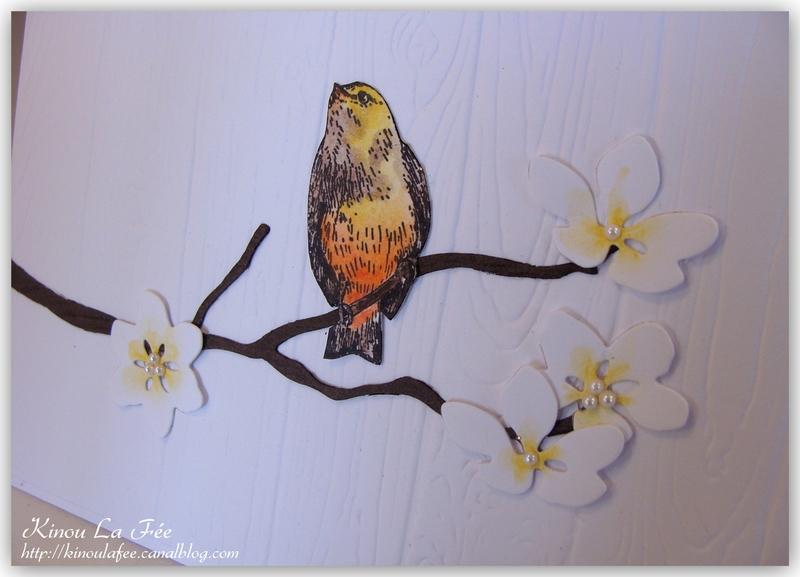 Carte Saisons Colorées Branche + Oiseau 3
