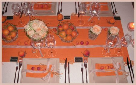 2009_07_07_table_abricots30